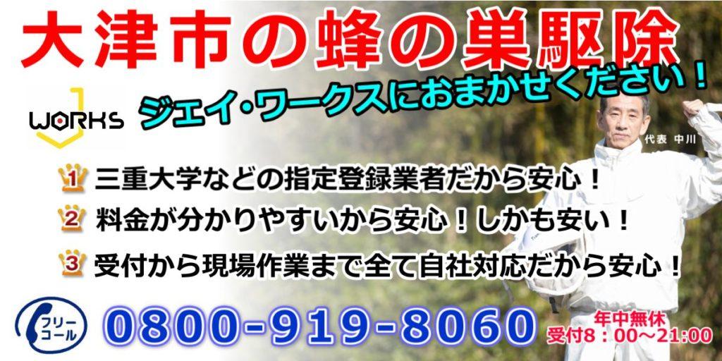 大津市のハチ駆除 スズメバチ駆除11000円 アシナガバチ駆除6000円 ネット割引中!