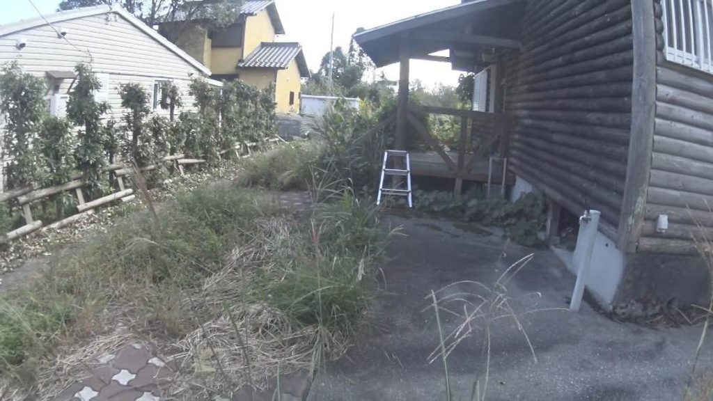 滋賀県高島市の空き別荘の蜂の巣駆除