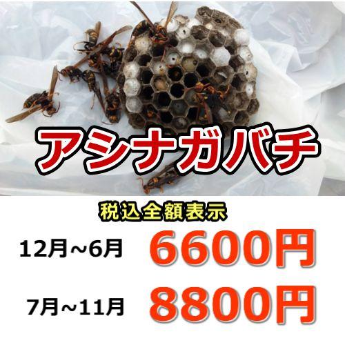 アシナガバチ駆除料金